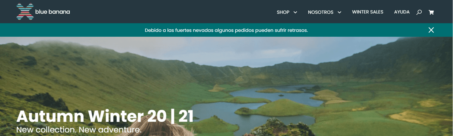 bluebananabrand shopify, facturacion 2020, plantilla shopify